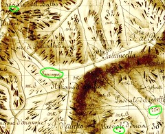 Extrait du Plan Terrier du secteur des bergeries de Luviu et de ses alentours