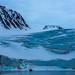 Amsterdamøya, Arctic