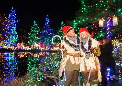 Christmas Gnomes (Svend and Jens), VanDusen Gardens Festival of Lights 2012 Christmas Celebration Connects People to the Natural Environment for the Holiday Season