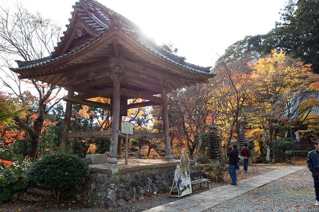 紅葉 - 大洞院