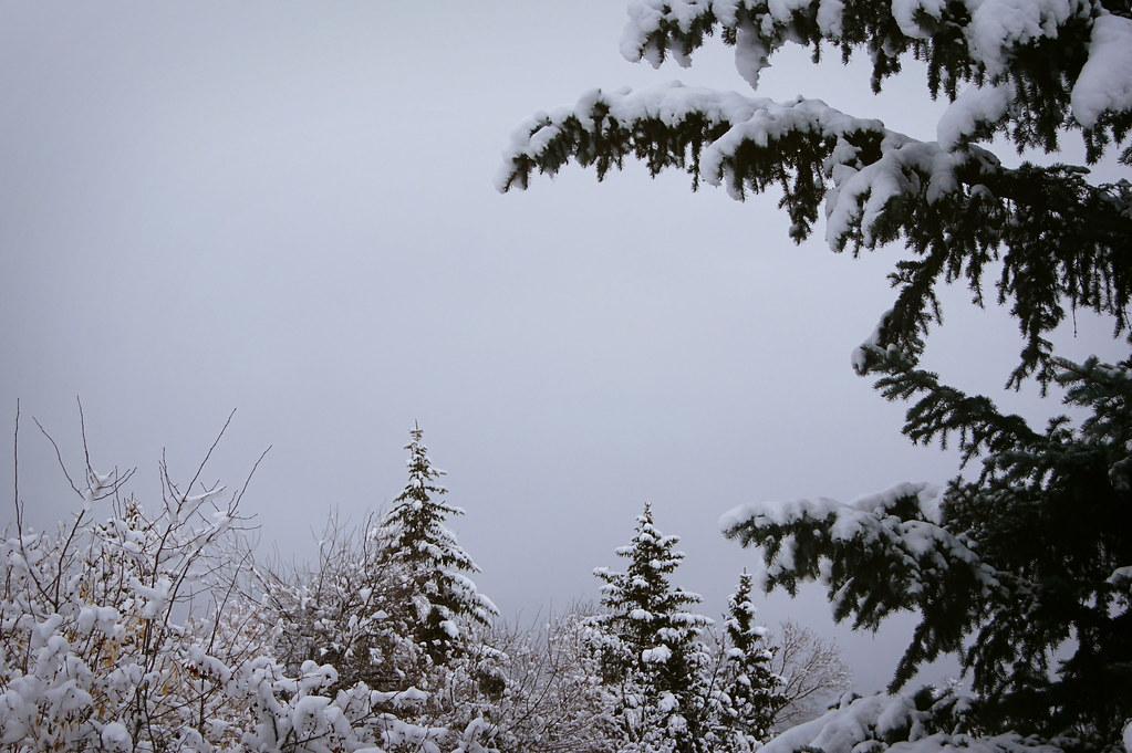 winteradventure8