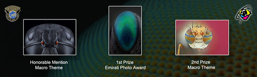 The 7th International Emirates Photography Competition 2012