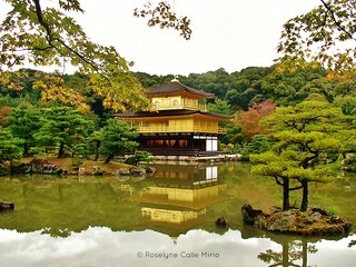 KINKAKU-JI IN AUTUMN