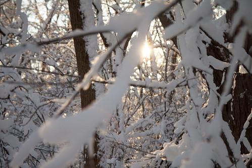 snö - 20121221 - 7