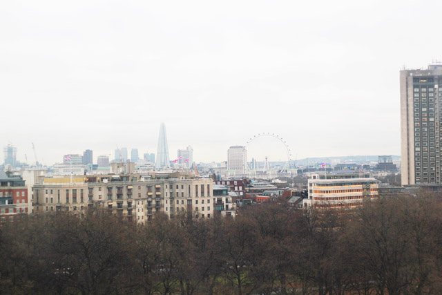 View from Giant Observation Wheel Hyde Park
