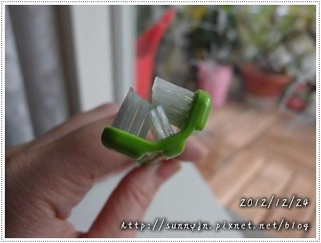 PC247452.jpg