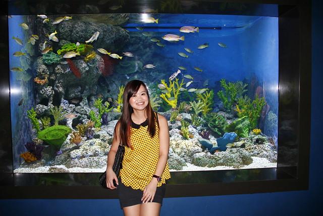 RWS S.E.A Aquarium 511