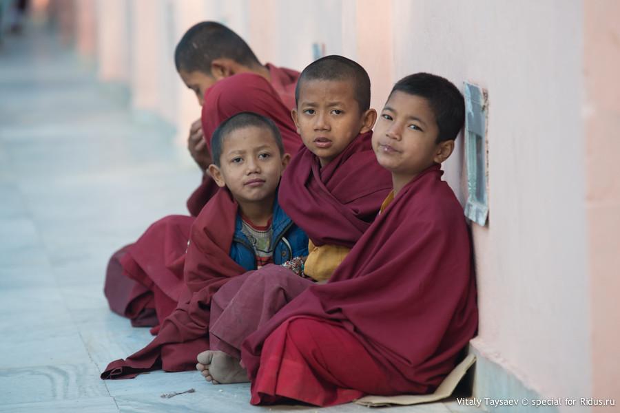 Tibetan children monks