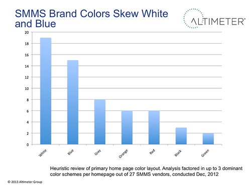 SMMS Brand Colors Skew White  and Blue