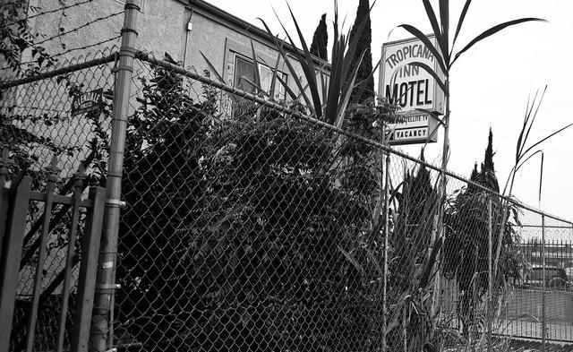 the tropicana inn motel