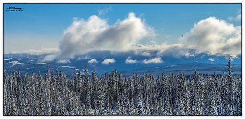 sky snow bc okanagan kelowna bigwhite