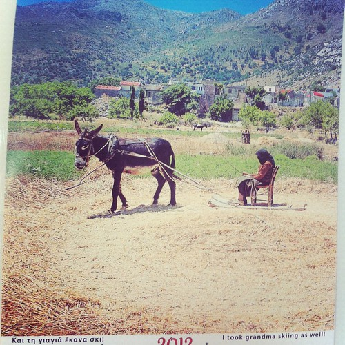 Donkeys of Greece Calendar 2012, June