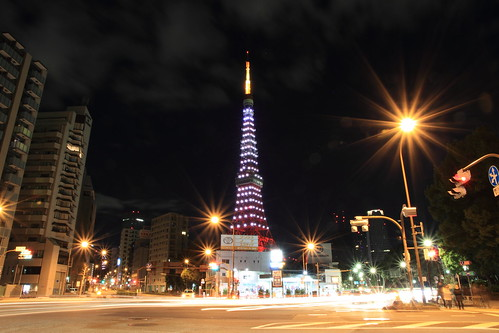 Happy new year 2013 with Tokyo Tower