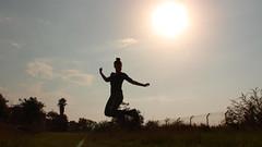Field and sun 1