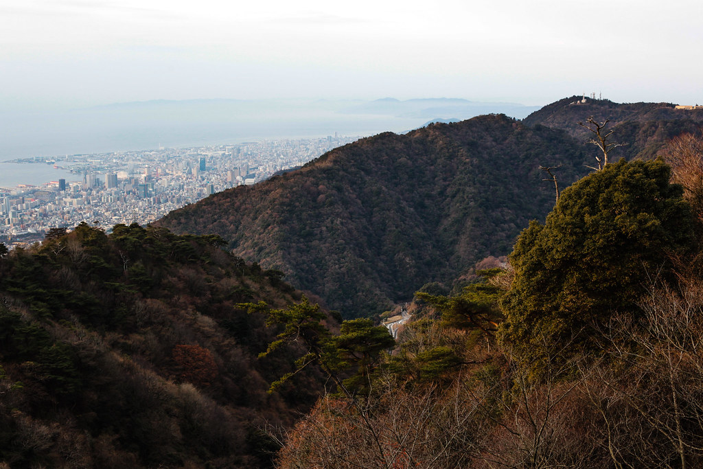 Uzumoridai 4 Chome, Kobe-shi, Higashinada-ku, Hyogo Prefecture, Japan, 0.004 sec (1/250), f/7.1, 50 mm, EF50mm f/1.4 USM