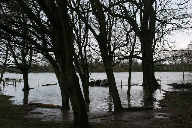 Flooding at Christchurch Meadow, Oxford