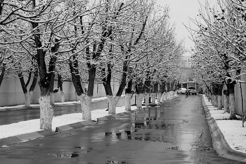 dias de invierno!