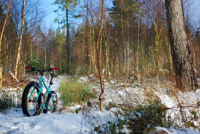 Pugsly snow ride