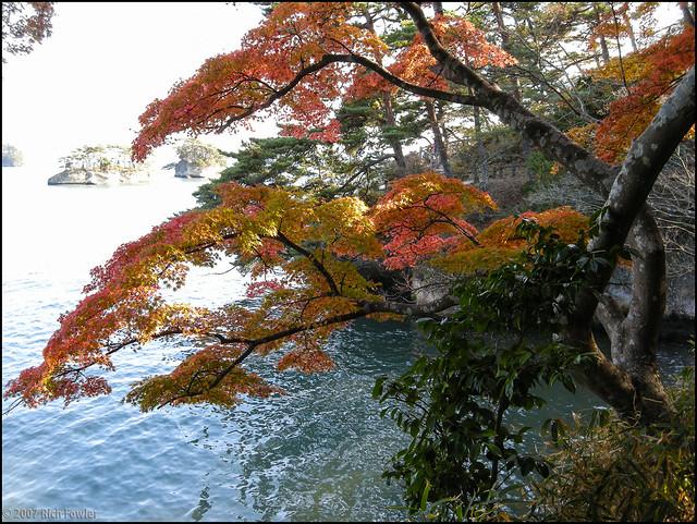 Oshima--Fall Colors