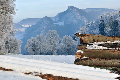 winter snow nature forest landscape switzerland frost country jura delémont greatshotss