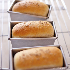 塩食パン20160826-DSCF6902