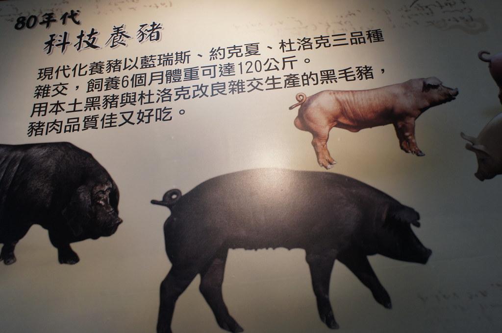 南投市香里活力豬品牌文化館 (9)