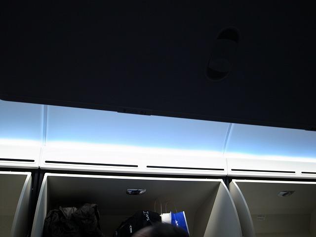 <p>b)ブルーのライトがきれい</p>