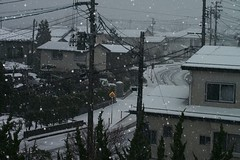 12月8日、雪