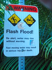 warn_flood