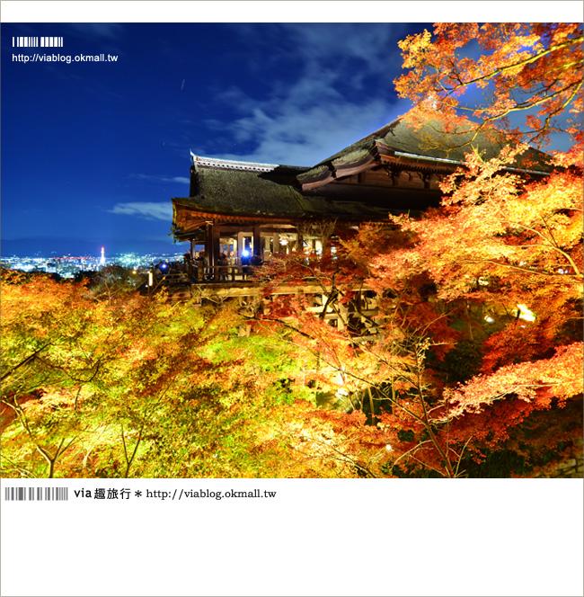 【京都清水寺】京都夜楓必遊景點~京都清水寺夜楓