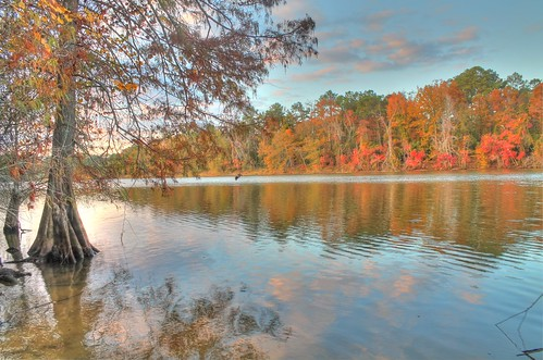 autumn sunset lake reflection fall clouds landscape texas houston hdr kingwood eastendpark lakehouston kingwoodtexas baldcypresstree suburbanlake
