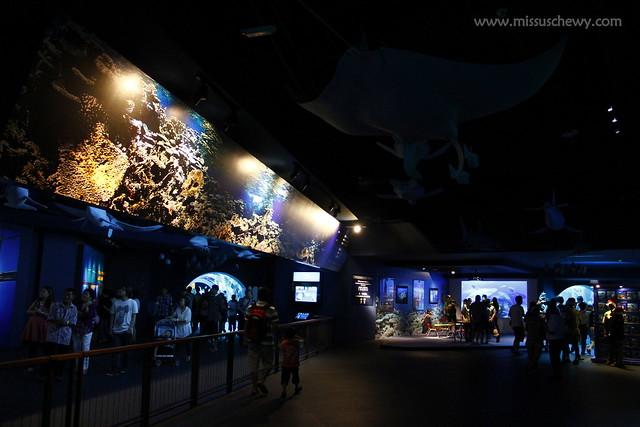 RWS S.E.A Aquarium 669