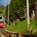 Od mezistanice je trať lanovky čím dál strmější, maximálního sklonu 68 % dosahuje pod horní stanicí. Na snímku je vidět také vjezd do tunelu Hegern. , foto: Niesenbahn