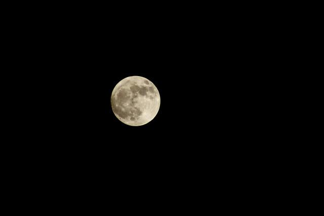 362/366: Luna