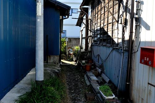 maebashi2012_40_kpax