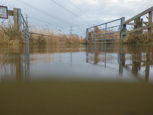 flooded gates