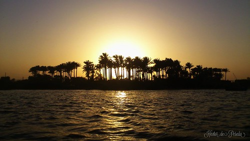 sunset river egypt nile cairo palmtree
