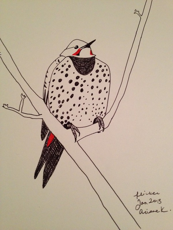 Pen drawing of the flicker