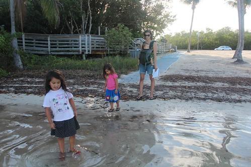 Day 155: Walking around John Pennekamp Coral Reef State Park.