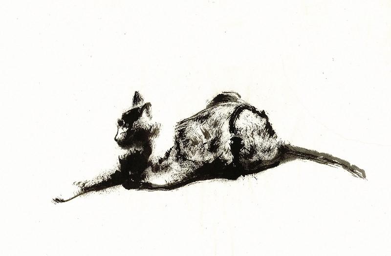 _lying_cat_2_