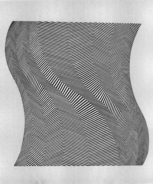bridget riley twist