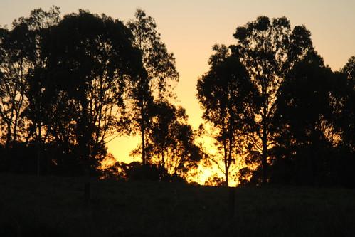 sunset action csg glenugie
