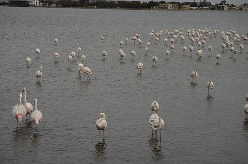 Walvis Bay, RTW 2012