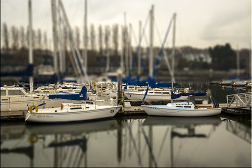 city boats harbor day cloudy january shift rainy 100views sail redwood raining tilt masts day23 tiltshift cs6 day23365 3652013 week4theme 365the2013edition 23jan13