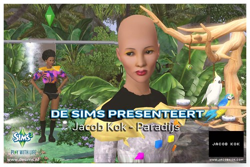 Jacob Kok in game Paradijs single