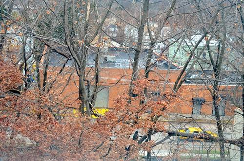 Yellow cab, Autumn's care