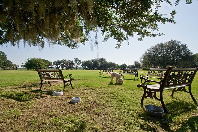 Plantation Dog Park