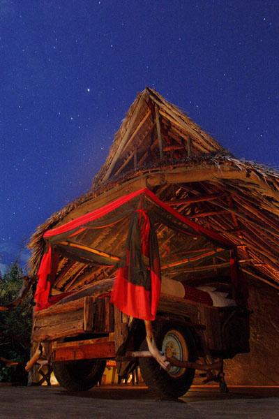ロイサバホテルのスターベッドとアフリカの夜空