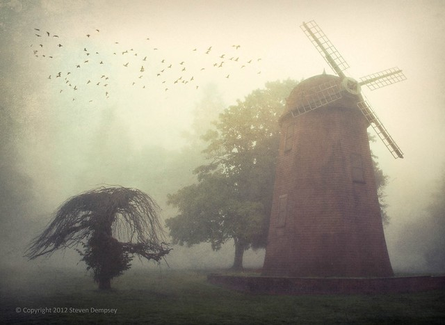 The Windmill and the Old Tree