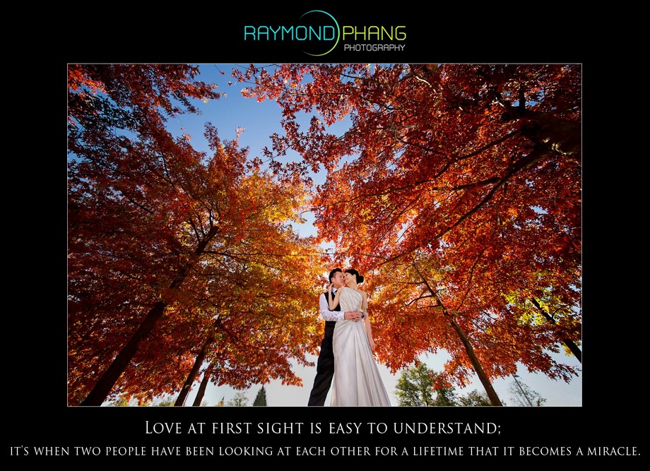 Raymond Phang Photography - Conceptualised Pre-Wedding 7